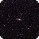 The Deer Lick Group and Stephan's Quintet,                                George Simon