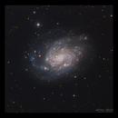 NGC300,                                Göran Nilsson