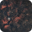 Widefield Cyngus with Cresent Nebula,                                Tristan Campbell