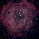 Rosette Nebula,                                Robin Clark - EAA imager