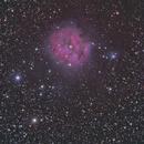 Cocoon Nebula,                                apaquette