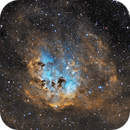 IC410, the Tadpole Nebula,                                photonjunkie