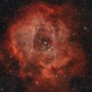 NGC2237,                                Fidel