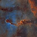 IC 1396 Elephant s Trunk Nébula,                                Sylvain Lefebvre