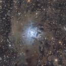 NGC7023 IRIS Nebula,                                CoFF