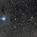 NGC 7023 & vdB 141,                                Christian Höferlin