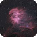 IC 2944,                                Gerson Pinto