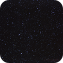 Seagull Nebula,                                NeilMac