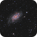 NGC 2403,                                Giorgio Baj