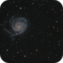 M101 with irregular Companion,                                Stephan Linhart