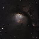 Messier 78 - crop,                                Günther Eder