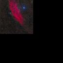 NGC 1499 - The California Nebula,                                David McGarvey