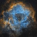 Rosette Nebula (HST Palette),                                Ivan Maklyakov