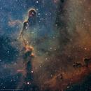 IC 1396 • Elephant's Trunk Nebula in SHO,                                Douglas J Struble