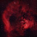 Sh2-171, NGC7822 and Berkeley 59 in Cepheus,                                Doversole83