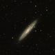 NGC 253 Sculptor Galaxy,                                Dave Watkins