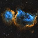 Soul Nebula, 2 pane mosaic in Hubble Palette,                                Trevor Nicholls
