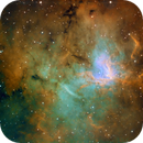 NGC 1491 or SH2-206,                                Stefan Schimpf