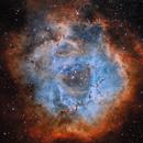 Rosette Nebula HST,                                Jacek Bobowik