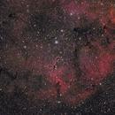 IC 1396  80/480  /  EOS600D  /  EQ3-2,                                Pulsar59