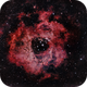 Rosette Nebula,                                nerdybeardo