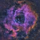 NGC2237 Rosetta Nebula,                                duval