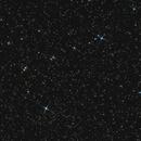 Constellation Grus,                                Ray Caro