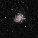 NGC 6946,                                Vlad