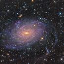 NGC 6744 Galaxy - LRGB by Insight Observatory :-),                                Daniel Nobre