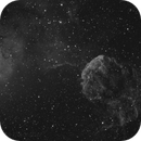 IC 443 The JellyFish and IC 444,                                Madratter