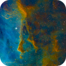 IC 2944 SHO,                                Miles Zhou