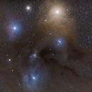 Rho Ophiuchi from dark skies,                                Scotty Bishop