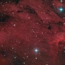 Pelican Nebula,                                Jonathan W MacCollum