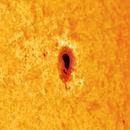 Sun Spot,                                Jim Matzger
