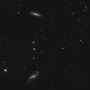Galaxy Season 2020 - lovely Triplet in Virgo,                                Michael S.