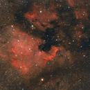 North America Nebula,                                MatthieuG