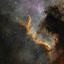 Cygnus Wall,                                Loran Hughes