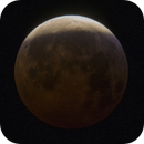 moon eclipse 2019,                                Manel Marin Guzman