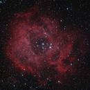 Rosette Nebula,                                Nic Doebelin