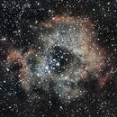Rosette - C49 / NCG 2237 ,                                zagers