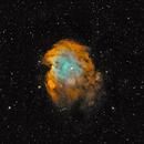 NGC 2174/5 - Monkey Head Nebula,                                Steve Thornton