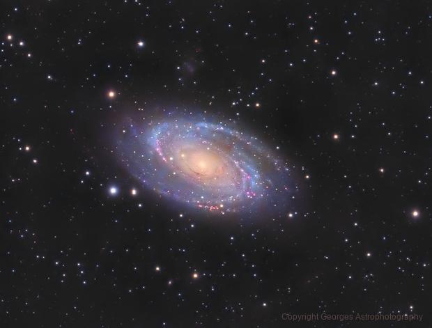 Messier 81 en LHaRVB crop,                                Georges