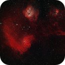 Flaming Star Nebula - IC405,                                Chris Hunt