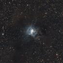 Iris Nebula (NGC7023),                                Roberto Frassi