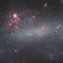 The Large Magellanic Cloud,                                Paul Ng