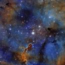 Elephant Trunk Nebula NB,                                David Fussell