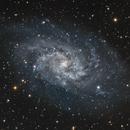 M33,                                Linda
