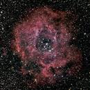 Rosette Nebula NGC2244,                                Patrick Graham