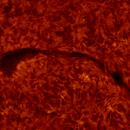 2020.10.26 Sun filament H-Alpha,                                Vladimir