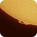 Animation: one hour of Sun activity,                                Jose Carballada